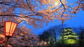 Venez partager votre passion ou découvrir la culturepop-japonaise
